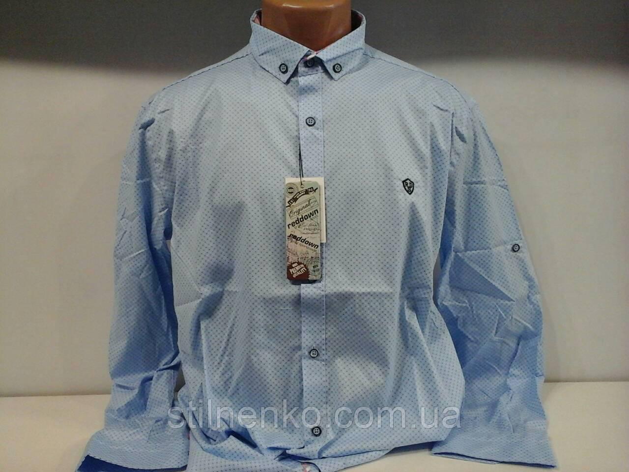 Сорочка для чоловіків R&D