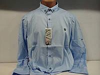 Сорочка для чоловіків R&D, фото 1