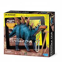 Стегозавр. ДНК динозавра