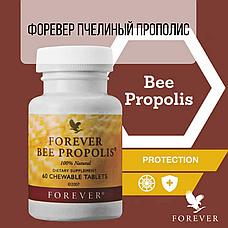 Форевер Пчелиный Прополис, фото 3