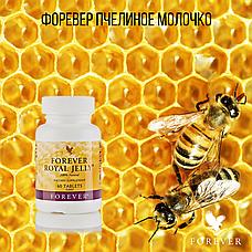 Форевер Пчелиное Молочко, фото 2