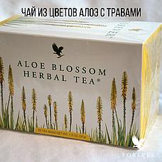 Чай из Цветов Алоэ с Травами, фото 2