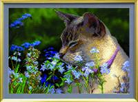 Схемы для вышивания бисером на авторской канве Кошка в траве