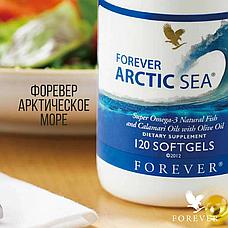 Форевер Арктическое Море, фото 2