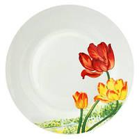 Набор 6 мелких тарелок ST Тюльпан d 20 см Белый (ST-55612_psg)