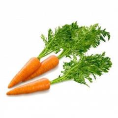 Семена моркови весовые