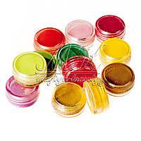 Набор пигментов для дизайна ногтей, 12 цветов PL-00