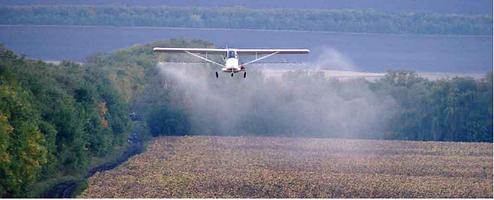 Десикация зерновых и технических культур