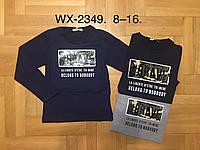 Реглан для мальчика оптом, F&D, 8-16 лет., Арт.WX-2349, фото 1