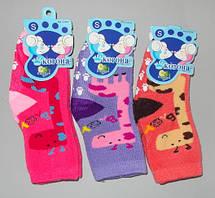 Детские носки махра за 1 пару 0-6 мес Раcпродажа !!!
