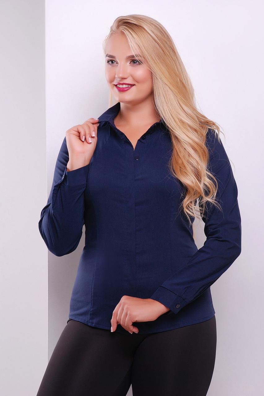 Женская блуза Норма-Б д/р