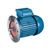 Асинхронный двигатель 0,25 кВт 3000 об/мин фланец