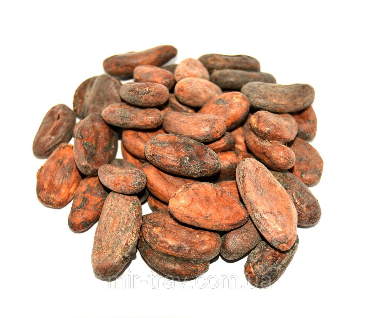 Какао-бобы 100 г