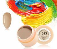Гель-краска Canni 563 грязно-желтая