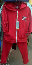 Спортивний костюм Муха, фото 3