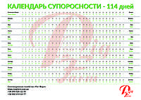 Календарь супоросности свиноматки - 114 дней
