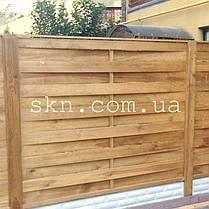 Забор из импрегнированной сосны Аризона, фото 3