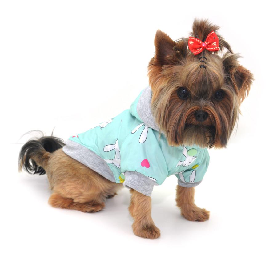Курточка для собак Весна бирюзовая мини 21х27
