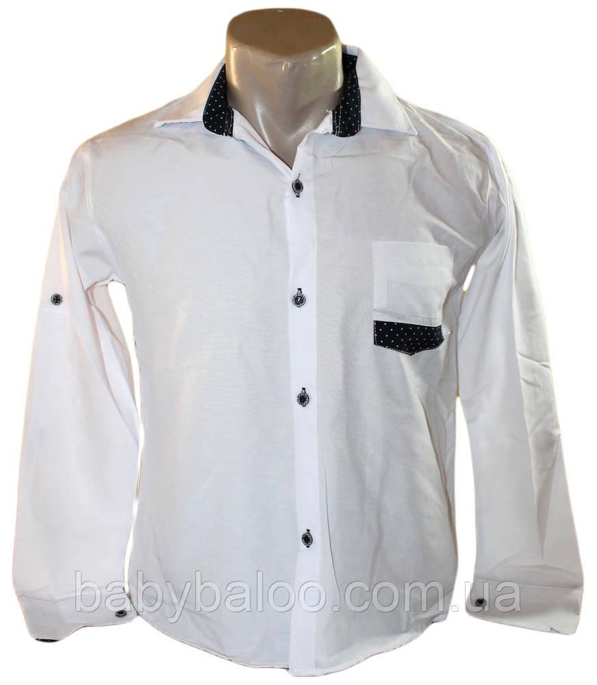 20a570695bb Рубашка юниор белая вставка на кармане (от 10 до 13 лет)  продажа ...