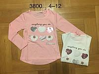 Трикотажный реглан для девочек оптом, F&D, 4-12 лет., aрт.3800, фото 1