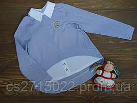 """Стильная хлопковая рубашка """"Strip"""" для девочки подростка бело-синяя р.134-158"""
