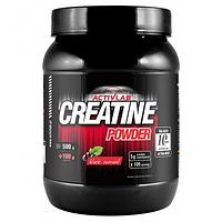 Creatine Powder 600 g (креатин)