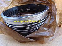 Кольца поршневые МТЗ, ЮМЗ, Д 240, Д 65 (комплект на двигатель) 3 компрессионных кольца+1 маслосьёмн.(Кострома)