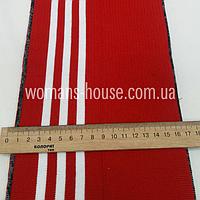 Довяз Красный с белыми полосами