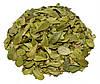 Толокнянка обыкновенная листья (медвежье ушко) 100 грамм