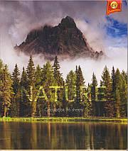 "Тетрадь 96 листов ТЕТРАДА ""Природа-2"" клетка, фото 3"