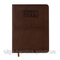 Ежедневник датированный 2019 AMAZONIA, A5, коричневый, BM.2114-25
