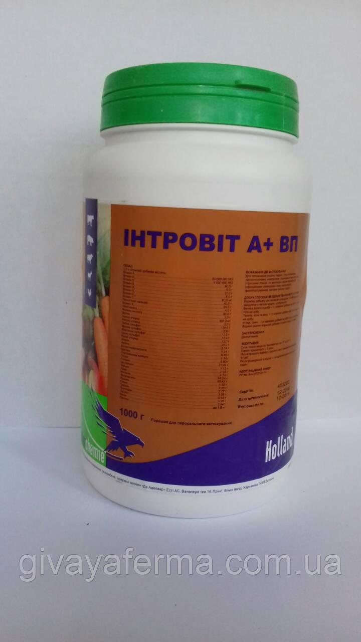 Витамины Интровит А+ВП 1 кг (Interchemie, Нидерланды), Водорастворимый комплекс витаминов
