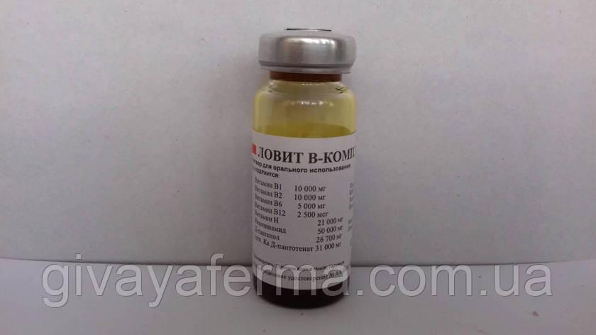 Lovit В-комплекс 10 мл, (LOVIT® B-Complex), ВИТАМИНЫ группы В, для орального применения, фото 2