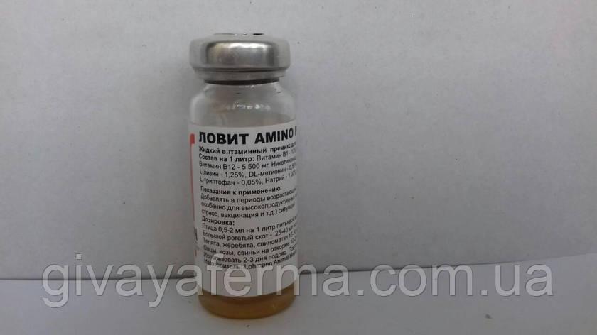 Ловит Амино Плюс для орального применения 10 мл, комбинация витаминов, минералов, аминокислот, фото 2