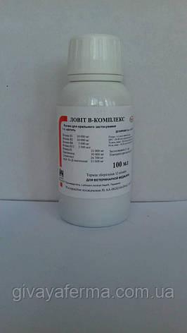 Lovit В-комплекс 100 мл, витаминный комплекс для орального применения (ловит), фото 2