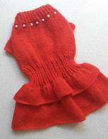Платье 4600 для собак мелких пород