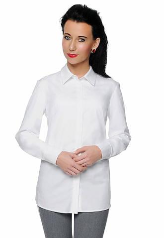 Женская рубашка белого цвета с длинным рукавом. Модель Zoja Top-Bis, коллекция осень-зима 2018-2019
