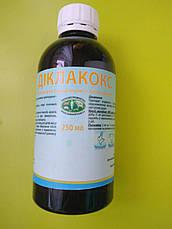 Диклакокс препарат от кокцидиоза, фото 2
