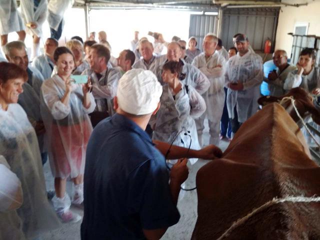 """Воркшоп Конференції """"Критичні точки молочного скотарства"""""""