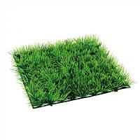 BLU 9094 - GRASS