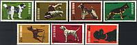 Румыния 1981 собаки  - MNH XF