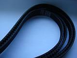 Ремень HTD1870-5m 15мм для кондиционеров, станков и др., фото 2