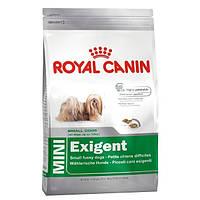 Royal Canin Mini Exigent сухой корм для привередливых собак - 800 г