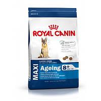 Royal Canin Maxi Ageing 8+ сухой корм для собак крупных пород старше 8 лет - 15 кг