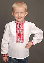 "Вышиванка для мальчика ""Срібло"" ( арт. BX1-408.0.7 )"