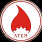 Напольные газовые котлы Атем-Житомир - 3 КС-Г -012СН Дым, одноконтурный, Атем, фото 5