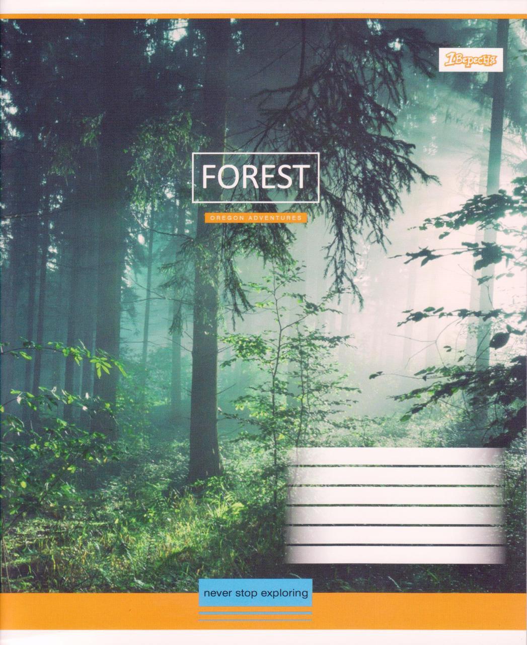 """Тетради 96 л. линия """"Forest"""""""