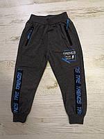 Спортивные брюки для мальчиков оптом, Mr.David, 98-128 рр., арт. CSQ-52151, фото 3