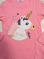 Трикотажный реглана для девочек оптом, Seagull, 6-14 лет., aрт. CSQ-52089, фото 5