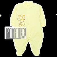 Человечек для новорожденного р. 80-86 демисезонный ткань ИНТЕРЛОК 100% хлопок ТМ Авекс 3044 Желтый